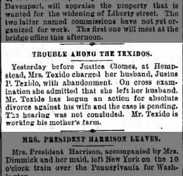TEXIDO  Justus and Adele hearing for divorce Daily Eagle  4 June 1891
