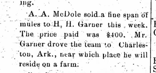 A.A. McDole sold a fine span of mules.