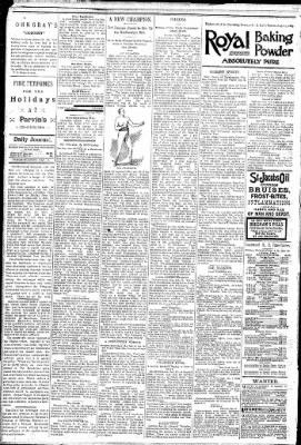 Logansport Pharos-Tribune from Logansport, Indiana on January 16, 1891 · Page 4