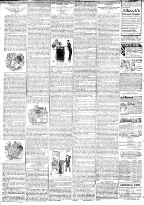Logansport Pharos-Tribune from Logansport, Indiana on January 22, 1895 · Page 6