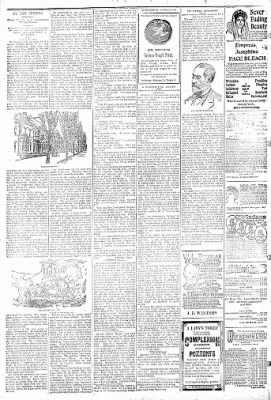 Logansport Pharos-Tribune from Logansport, Indiana on March 6, 1895 · Page 6