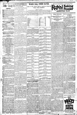 Logansport Pharos-Tribune from Logansport, Indiana on August 19, 1896 · Page 4
