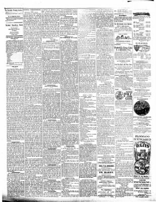 The Postville Review from Postville, Iowa on July 9, 1892 · Page 2