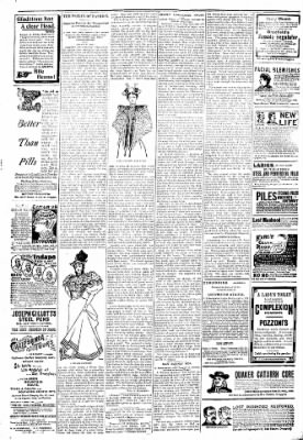 Logansport Pharos-Tribune from Logansport, Indiana on March 25, 1894 · Page 6